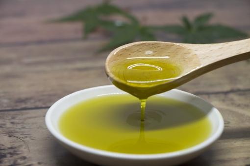ヘンプシードの効果と栄養素で、不足しがちな栄養バランスを